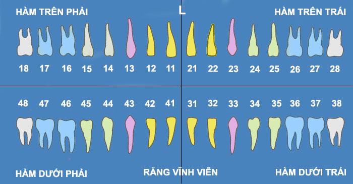 nhổ răng số 18 - 1